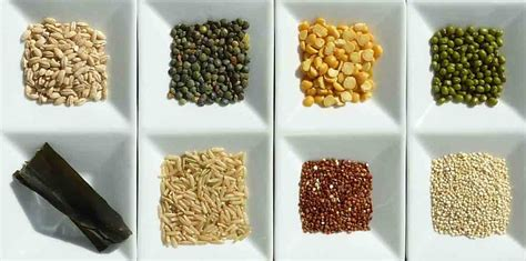 carbohydrates nutrients what are the seven major classes of nutrients answered