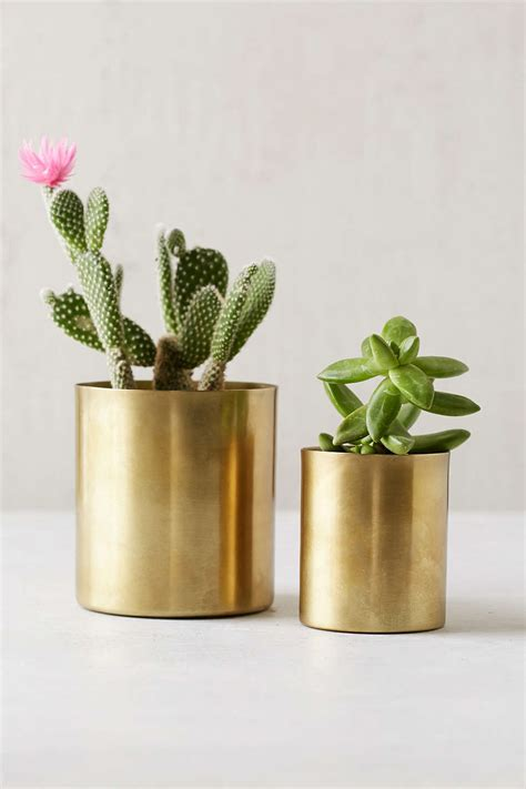 Gold Planters by Gold Metal Planters From Outfitters Decoist