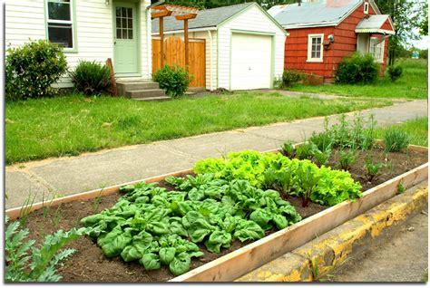 Beginner Vegetable Garden Easy Irrigation Weed Block Flora Beginner Vegetable Garden