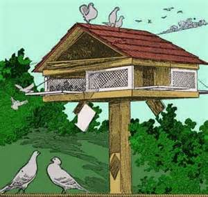 Building A House Online Free Pigeon House Plans All Free Plans From Stan S Plans
