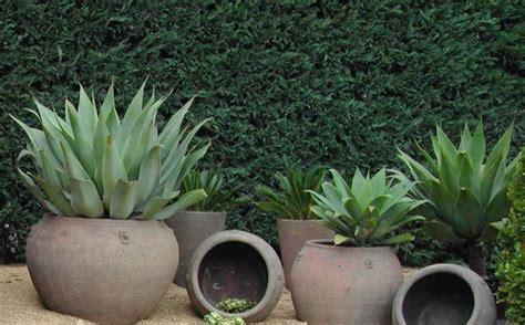 Garden Vases Pots 1000 Ideas About Large Pots On Large Planters
