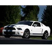 FORD Mustang Shelby GT500  2009 2010 2011 2012