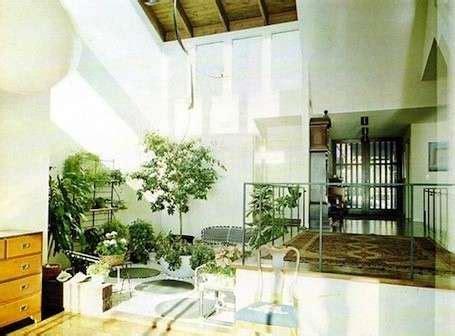 arredare con le piante da interno arredare con le piante da interno foto design mag
