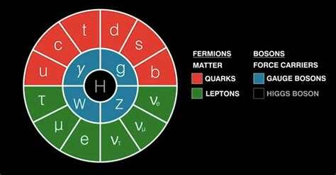 standard model the standard model of particle physics explained fact