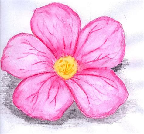 flowers by color water colour flower by x x on deviantart