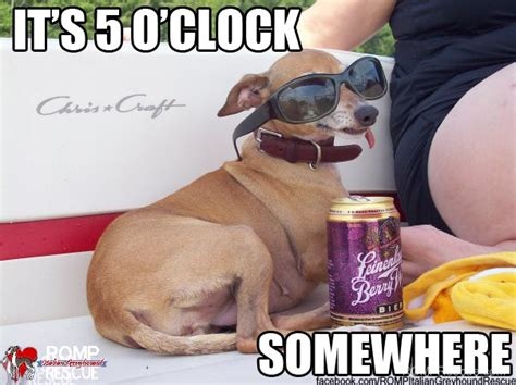 Its 5 Oclock Somewhere by Wine Memes