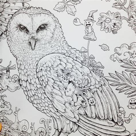 81 Animorphia Coloring Book Pages An