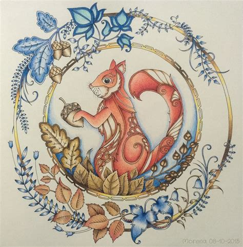 Enchanted Forest Coloring Card Bentuk Kartu 1000 images about coloring squirrels on