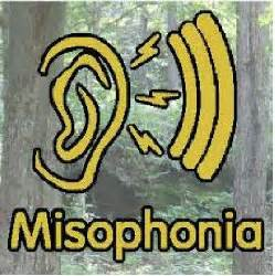 misophonia test 10 best misophonia test online images on pinterest