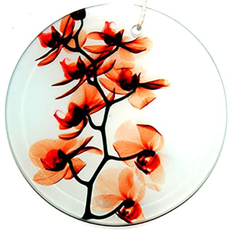 x ray photograph glass ornament suncatcher with orchids