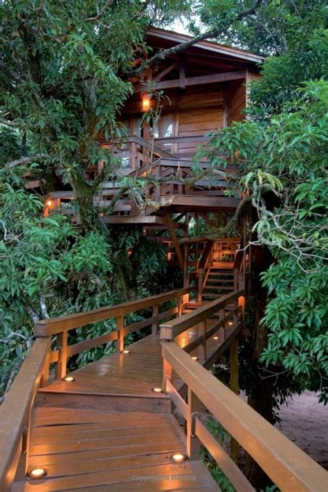 Treehouse Masters Luck O The Cottage by De 25 Mest Popul 230 Re Id 233 Er Om Tree House Resort P 229