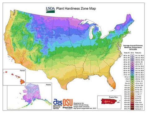 find gardening zone find your hardiness zone for the garden