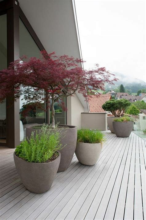 Potted Plants In The Garden Garden Ideas With Lots Of Potted Trees For Patio