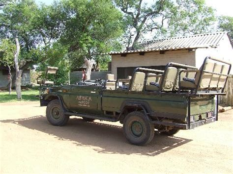 african safari jeep open safari jeep picture of klaserie private game