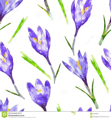 watercolor pattern with purple flowers vector free download watercolor seamless pattern with purple crocus flower and