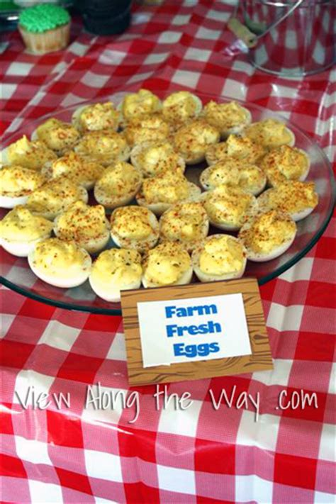 farm themed birthday food party theme ideas barnyard farm first birthday inspiration