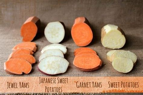 what color are sweet potatoes yams and sweet potatoes is there a difference different