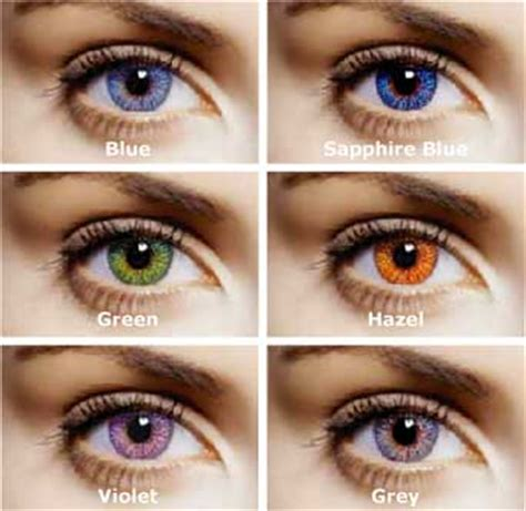 expression color contacts expression color contacts neiltortorella