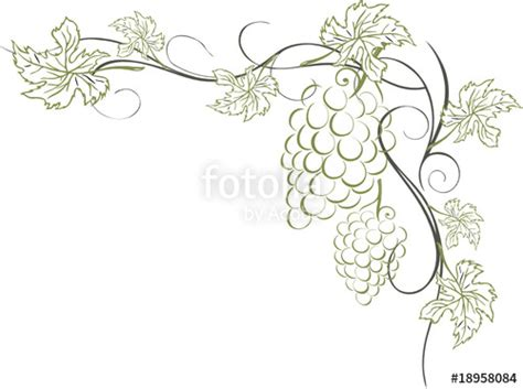 Hochzeitseinladung Weinrebe by Vektor Wein Weinrebe Ranke Weinbl 228 Tter Weintrauben