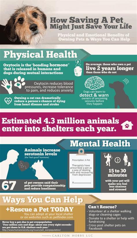 benefits of owning a benefits of owning a pet visual ly