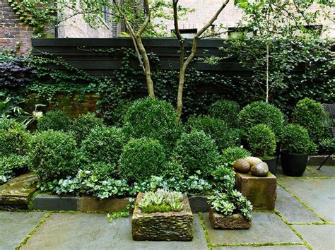 courtyard garden design beautiful townhouse courtyard garden designs digsdigs