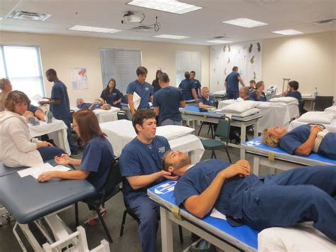therapy internships sarasota prepares physical therapy assistant students for