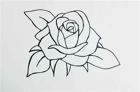 how to draw doodle roses pictures how to draw a drawing gallery