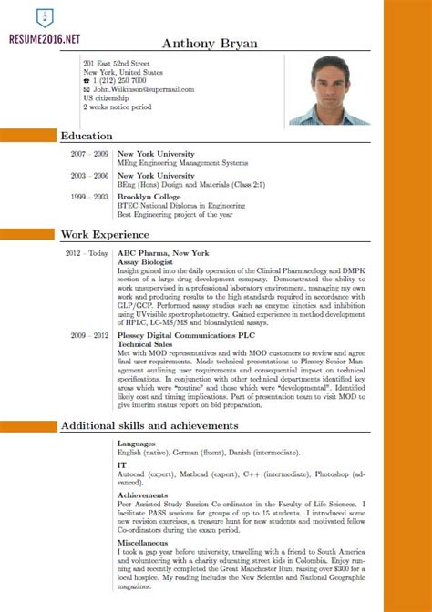 bpo resume templates 37 free samples examples format download