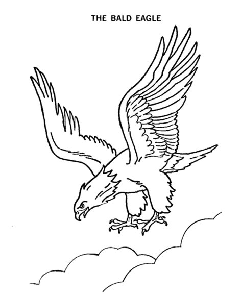 coloring page harpy eagle harpy eagle clipart coloring page pencil and in color