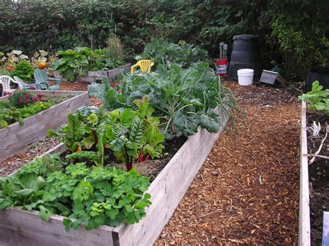 vegetable beds 31 days of gardening with children day 1 that bloomin