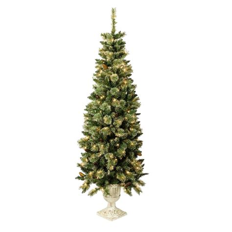 shop holiday living 5 5 ft indoor outdoor pre lit spruce