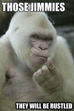 Albino Meme - those jimmies they will be rustled albino gorilla jimmy