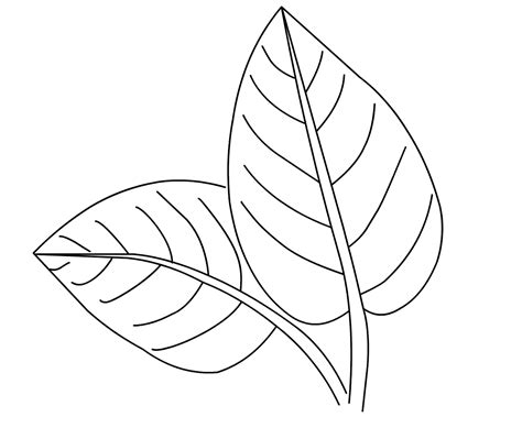 leaf coloring pages free coloring pages