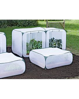 1000 images about garden screening on gardens