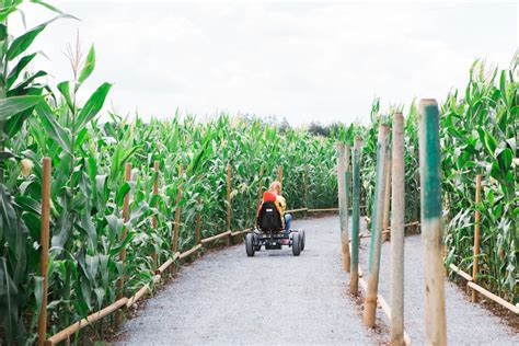 Family Farming Essay by Corn Mazes And Autumn Family Adventure In The Fraser Valley Westcoast Food