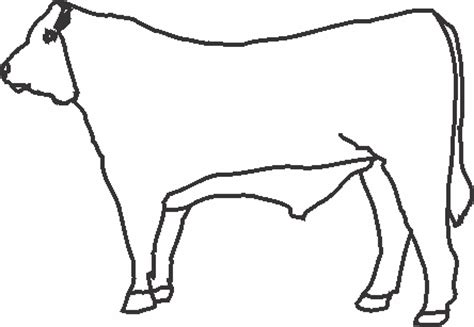 hereford cow coloring page hereford coloring pages coloring pages