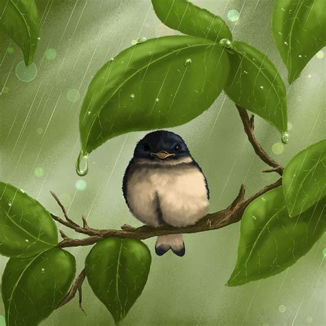 images of love birds in rain under the rain painting by veronica minozzi
