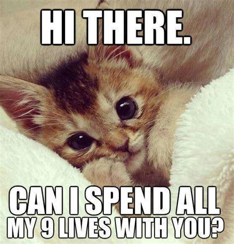 cute love memes thatll melt  heart sayingimagescom