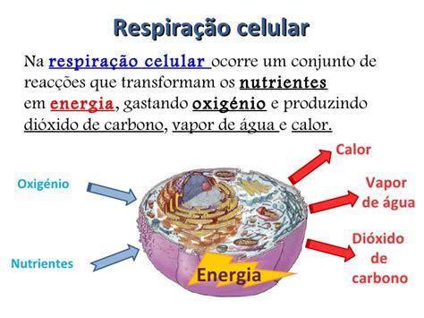 o que é capacitor de celular respira 231 227 o celular