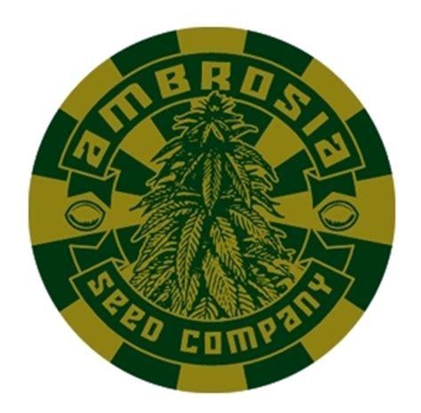 marijuana seed bank usa cannabis seed banks usa