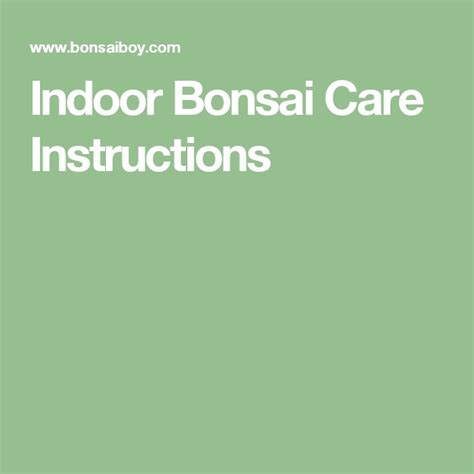 bonsai care manual best 25 indoor bonsai ideas on bonsai tree near me bonsai tree types and bonsai