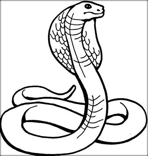 free coloring pages king cobra king snake coloring page king snake coloring page