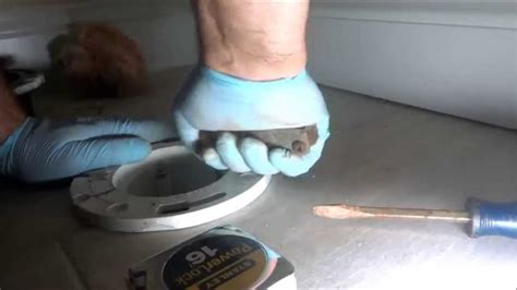 How To Make A Pipe Out Of Toilet Paper Roll - pvc toilet repair flange added to cast iron pipe