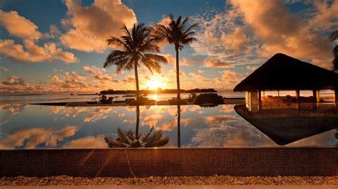 full hd wallpaper ocean palm arbor reflection cartagena