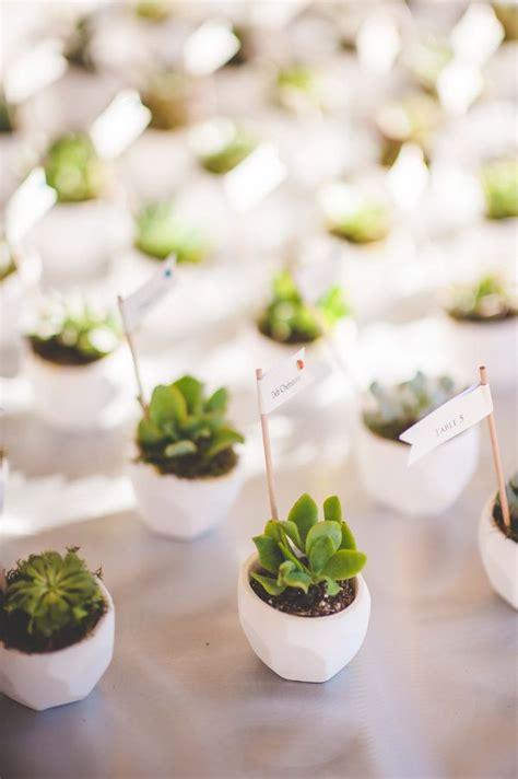 wedding supplies best 25 succulent wedding favors ideas on pinterest