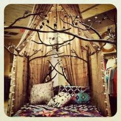 canopy and tree bed frame home tree