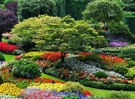 Beautiful Places Butchart Gardens Victoria Bc Canada Bc Flower Garden