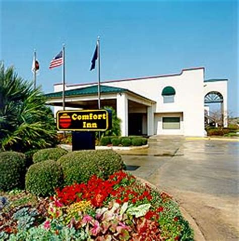 comfort suites natchitoches world executive natchitoches hotels hotels in