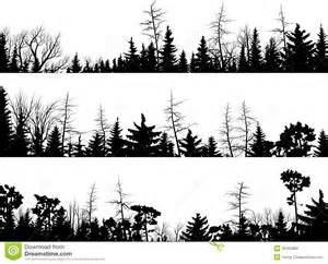 horizontal silhouettes of coniferous wood royalty free