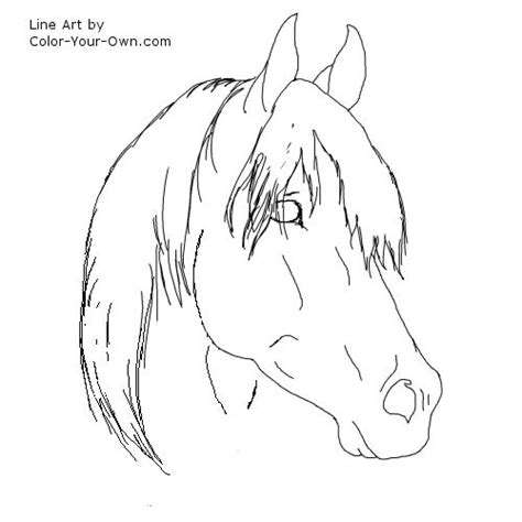 arabian stallion coloring page